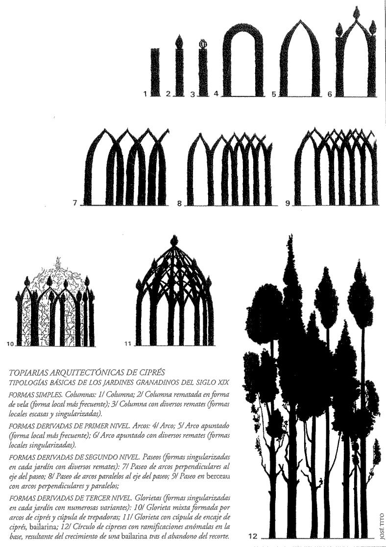 Tipologias topiarias del jardín granadino del siglo XIX